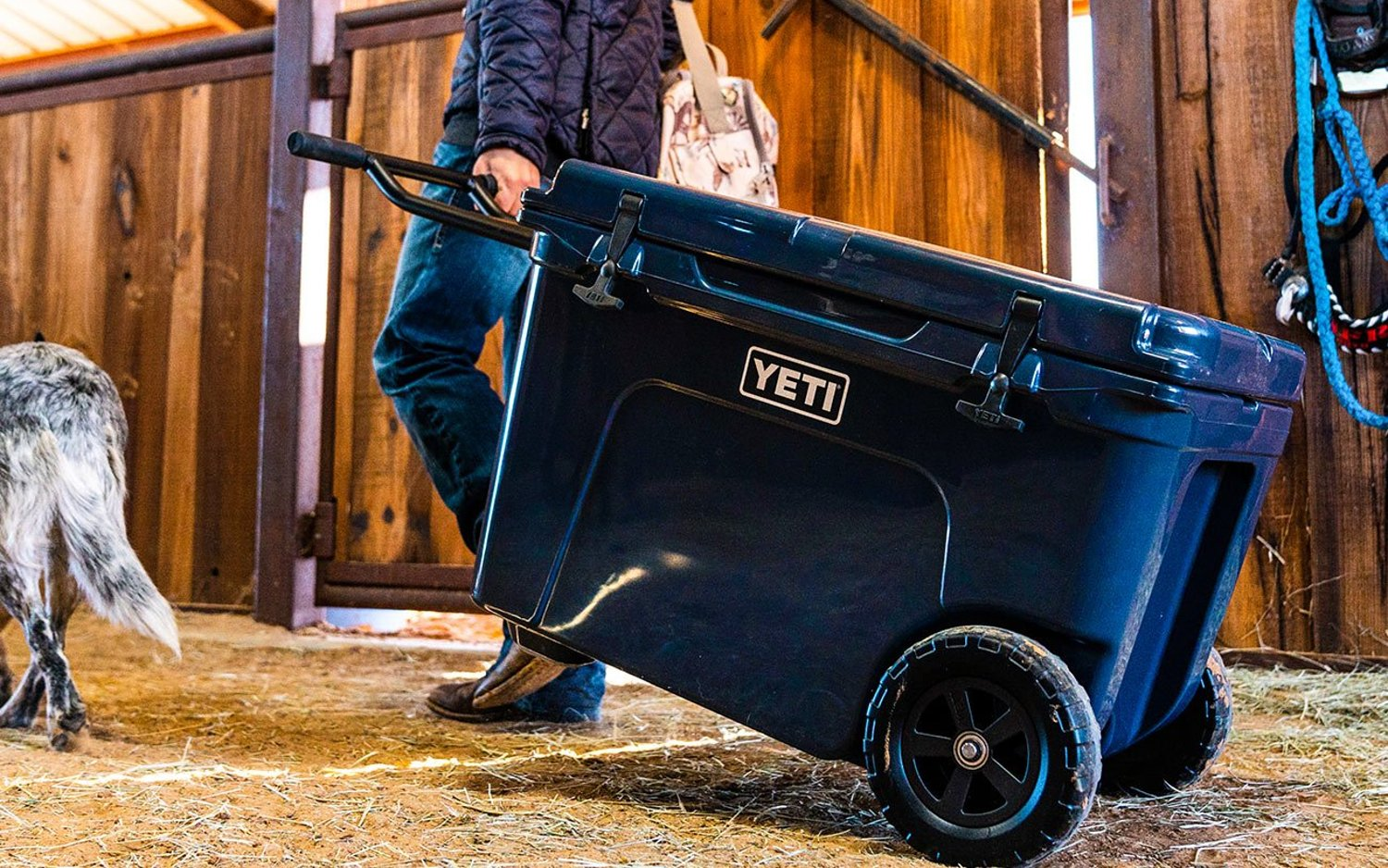 Best Rolling Coolers With Wheels