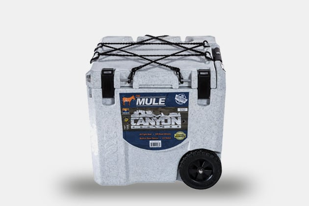 Canyon Cooler Mule