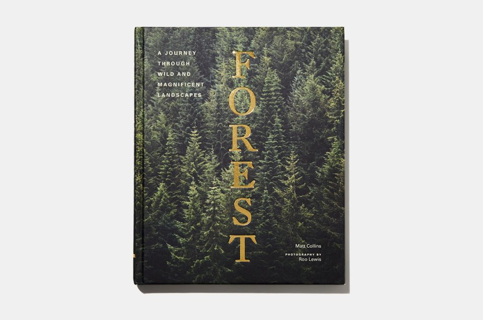 Forest: A Journey Through Wild and Magnificent Landscapes