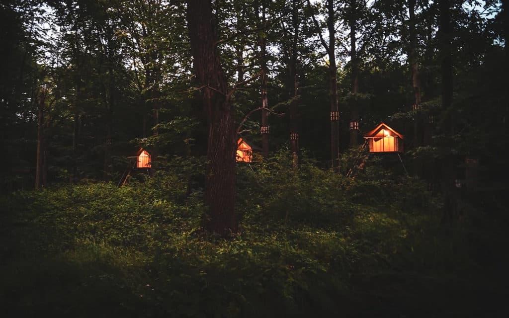 Boomkamp Treehouse Hotel